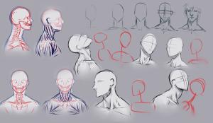 drawing_necks_by_moni158-d4xqcn4